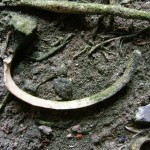 Archéologie 6